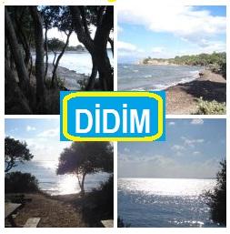 Didim_Resimleri